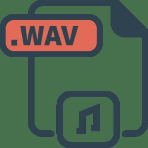 Converteer WAV naar tekst