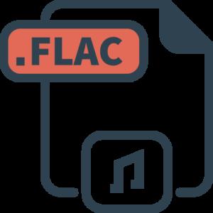 Konverter fin FLAC til tekst