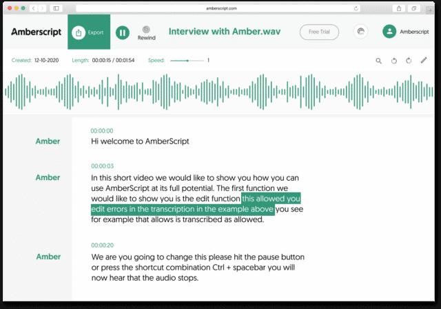Audio transcription online editor view