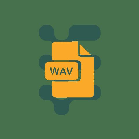 WAV file type icon