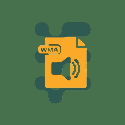 WMA file type icon