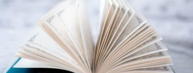 Amberscript-Manualen