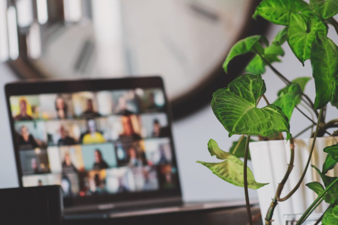 Laptop with an online meeting displayed on screen, with a green plant in the front of the picture